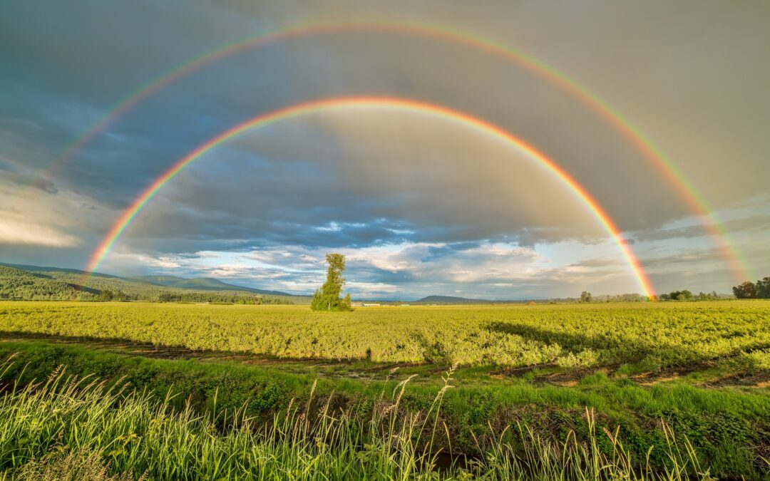 Discover the hidden blessings in change