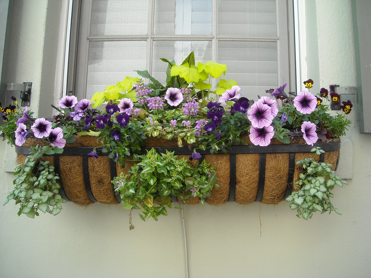 Railing Planter Boxes - 10 Minutes for mom