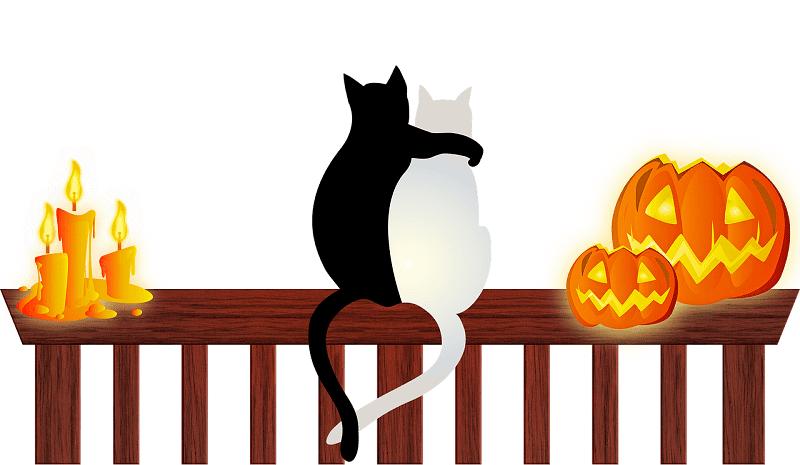 halloween-cats 2020