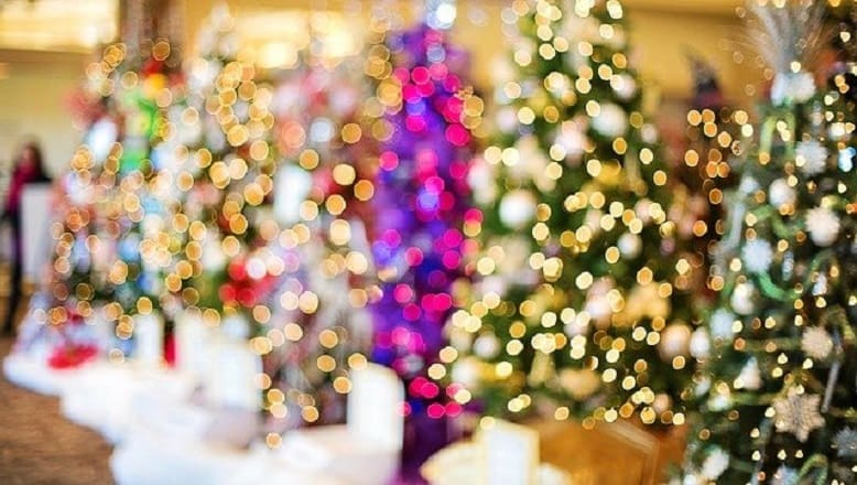 Christmas Trees by Type