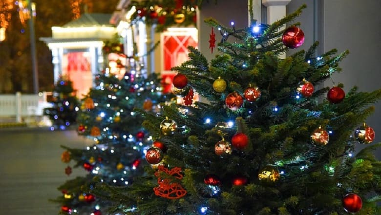 Outdoor and Indoor Christmas Decorations