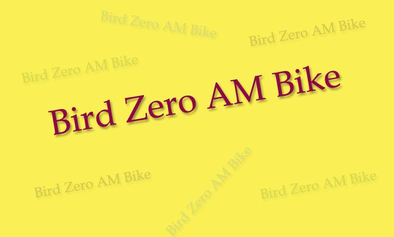 Bird Zero AM Bike - 10minutesformom