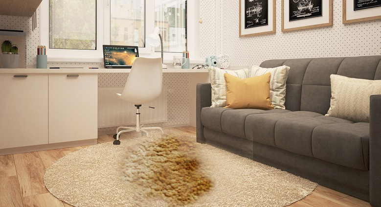 How to Banish Reappearing Carpet Stains