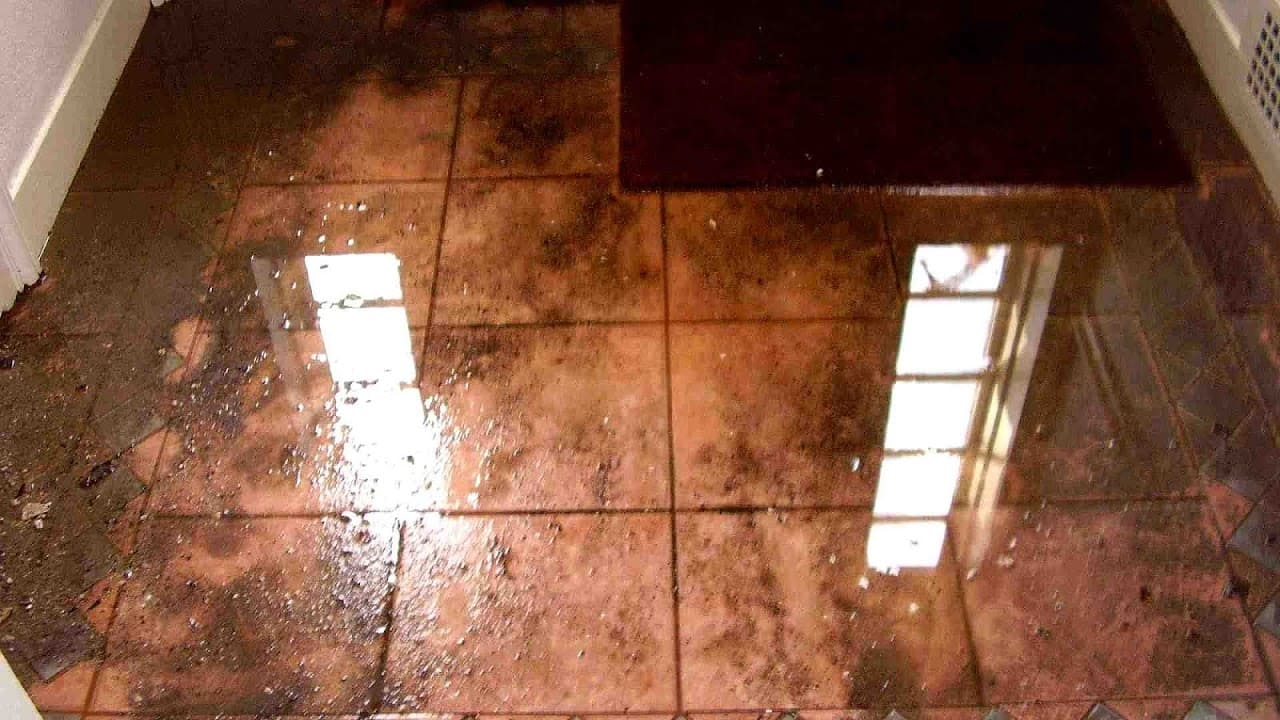 Water Damage Restoration Contractor - How to Fix Large Water Damages