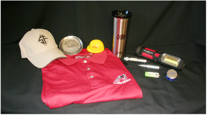 Media Frogg promotional products example
