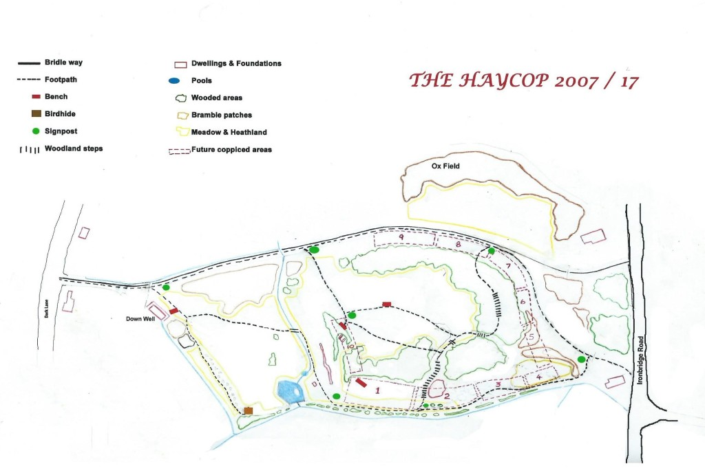 The Haycop site