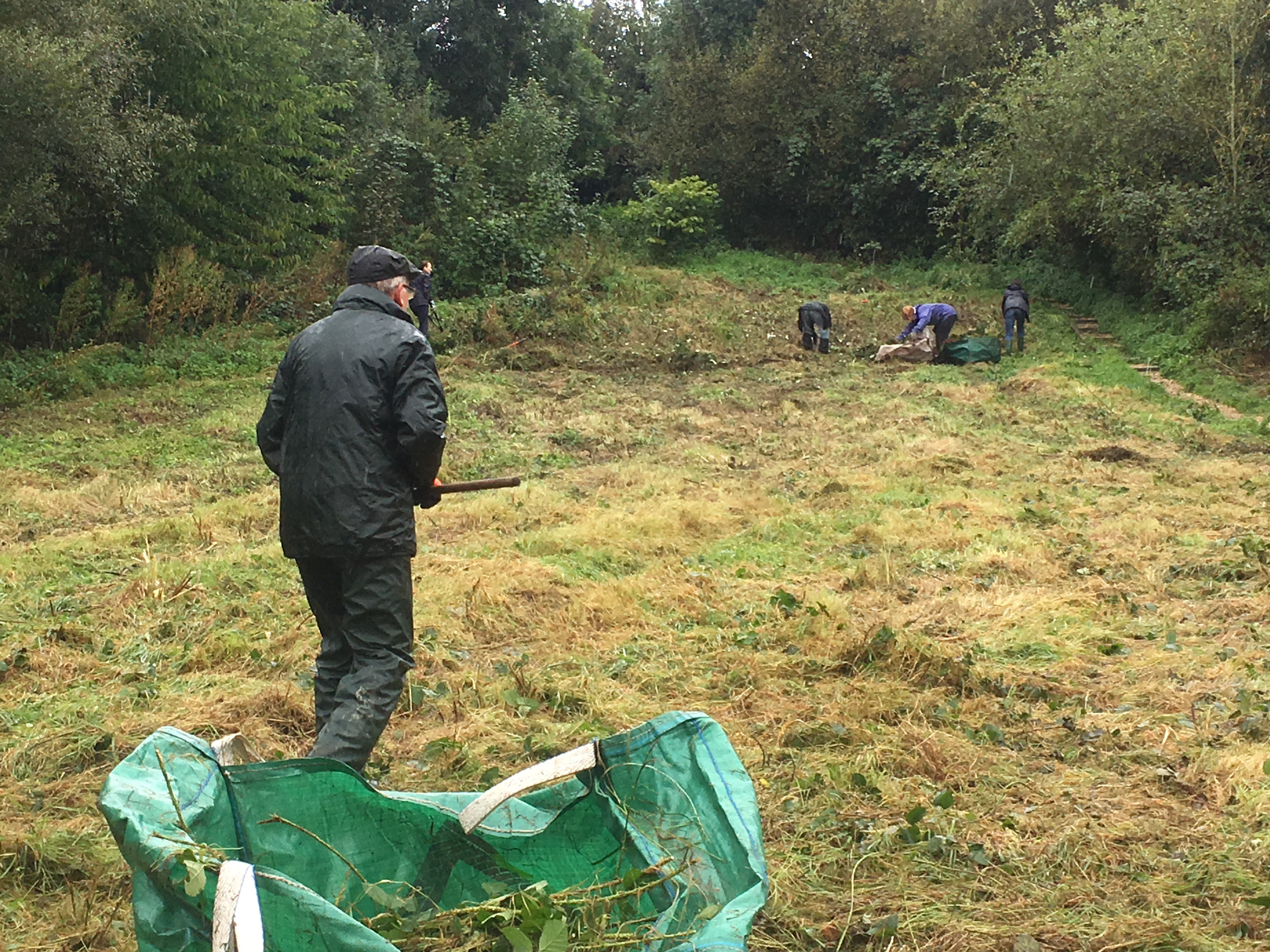 Clearing up the Meadow Cut 1st October 2016