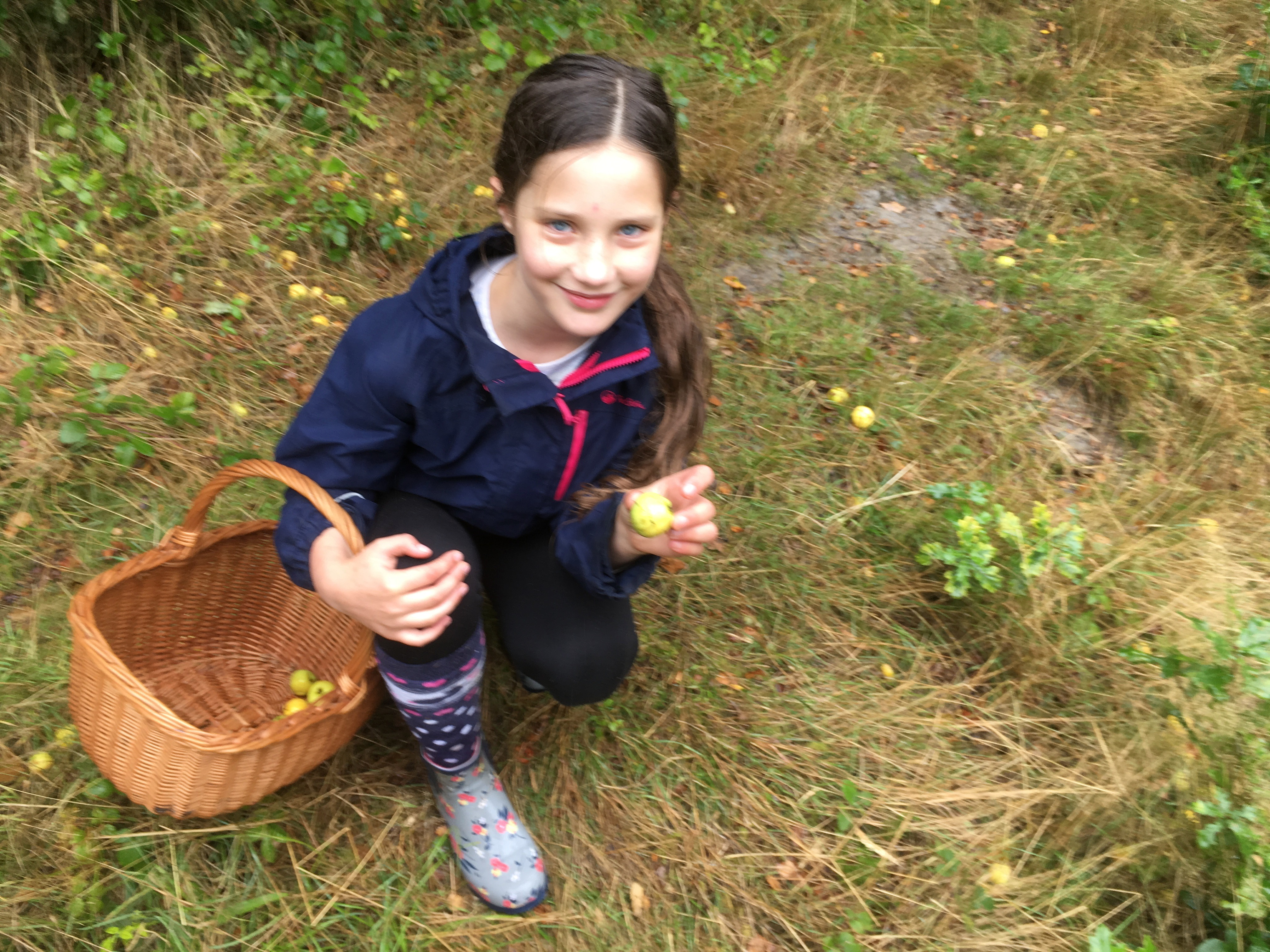 Eleanor collecting crab apples