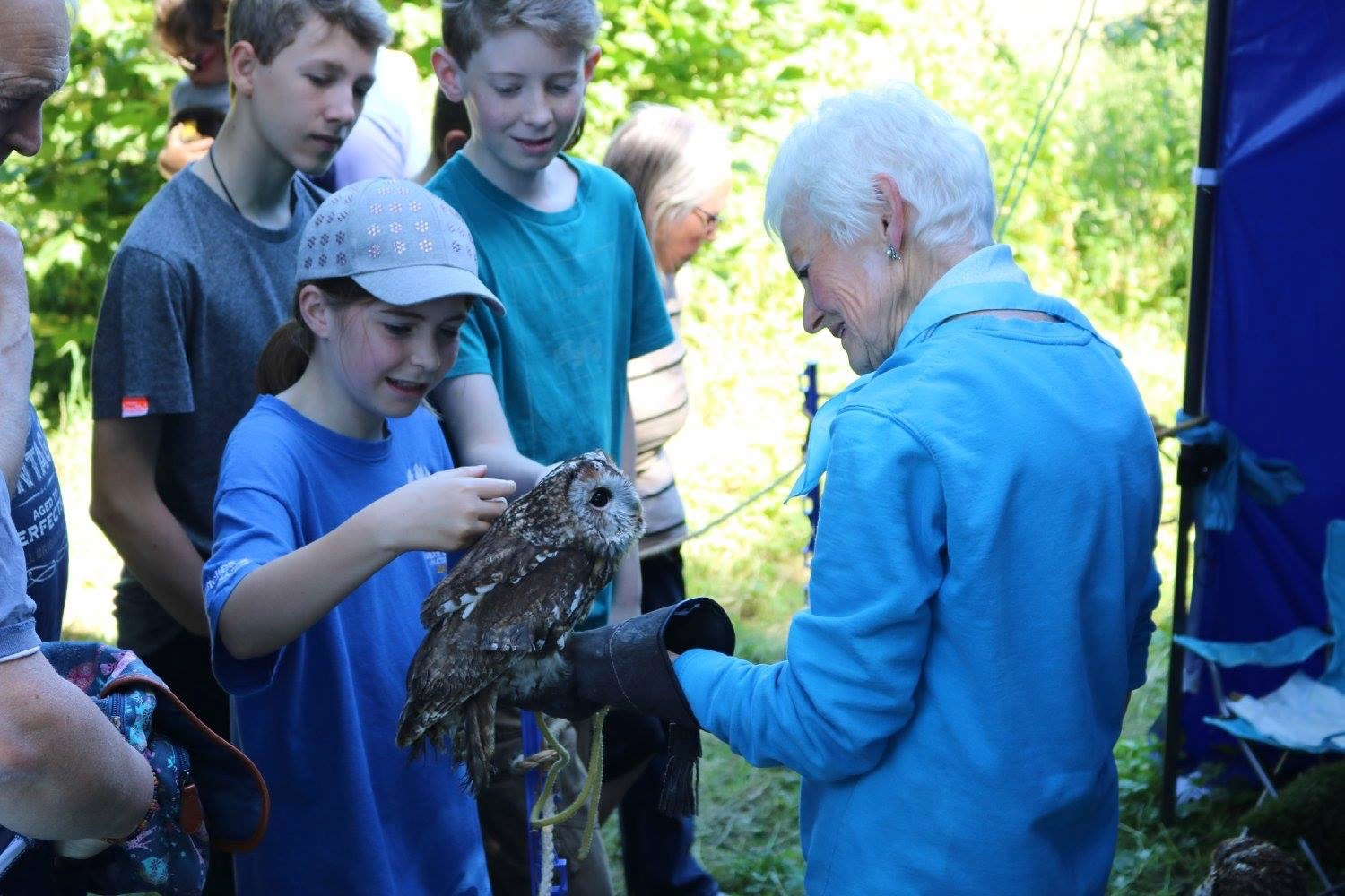 The public interact with Chelmarsh Owls