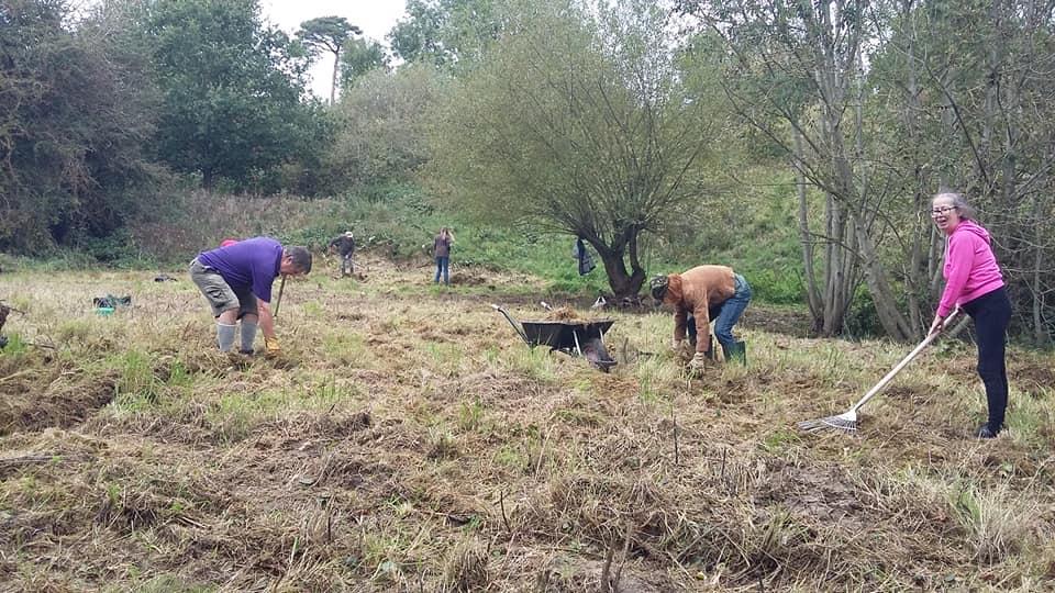 Volunteers Clearing the Meadow Cut
