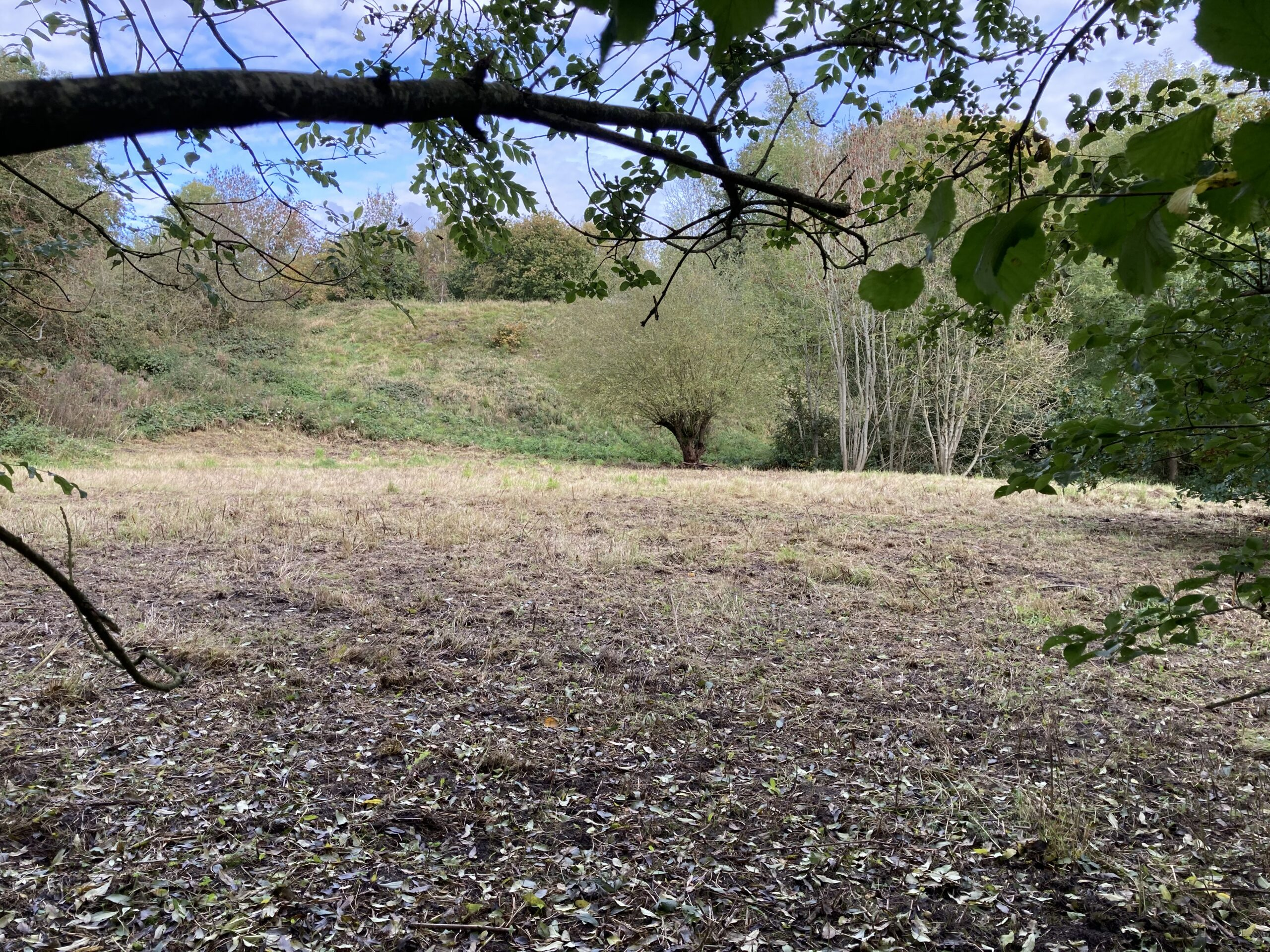 The South Bank from across the Meadow - October