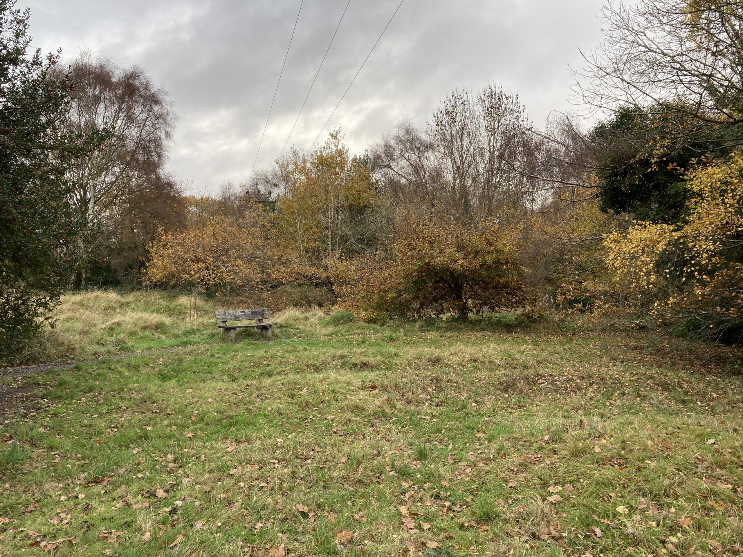 A view form Xander's Meadow to the Heath - November