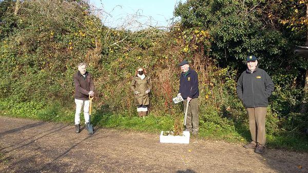 Ironbridge Rotary Club Present Tree Saplings to the Haycop Nature Reserve