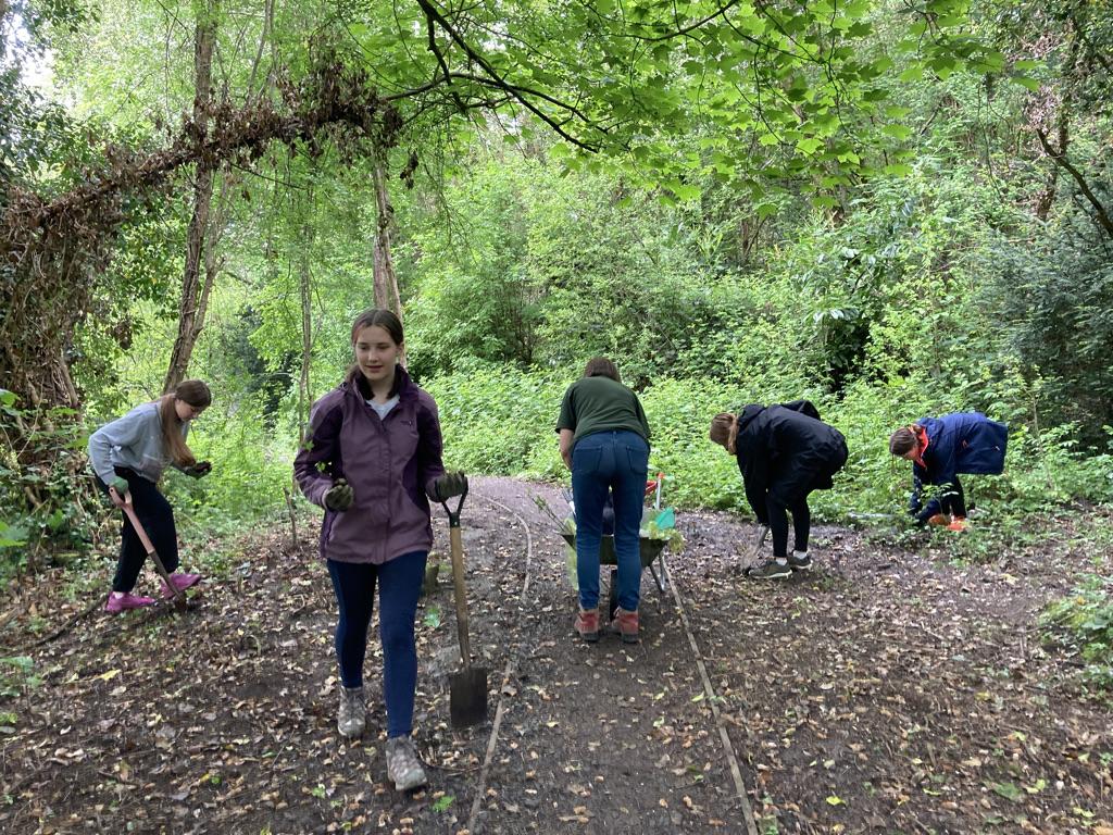 DoE Volunteers planting Trees