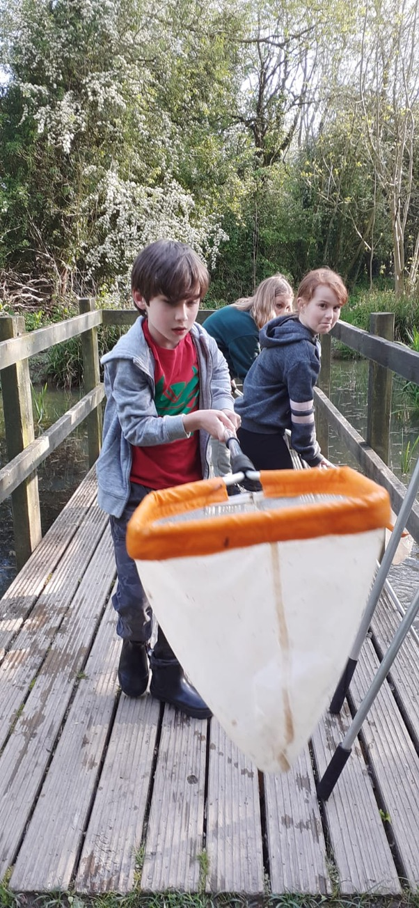 1st Broseley Cubs Pond Dipping