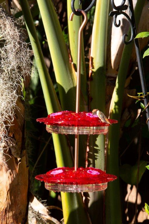 Stackable Hummingbird Feeders by ShopDePalma