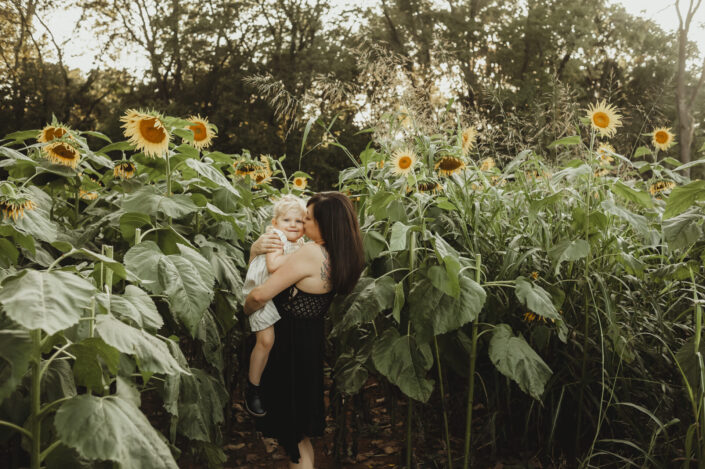 sunflower field photos virginia