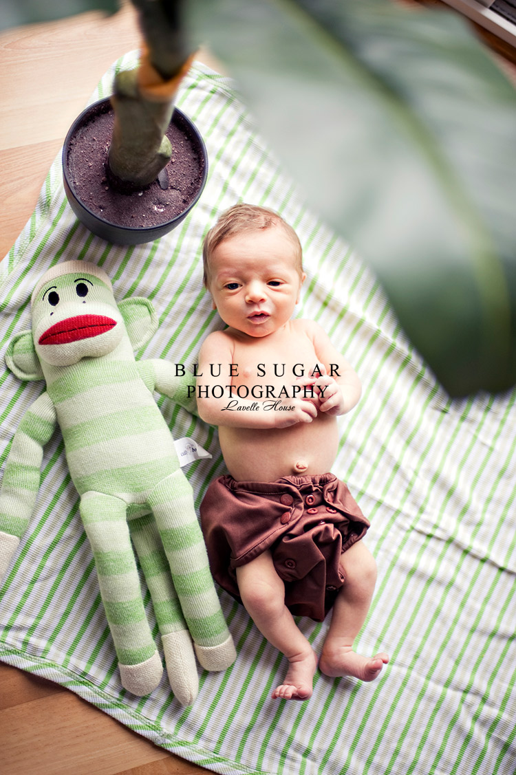 Take Your Own Newborn Pictures