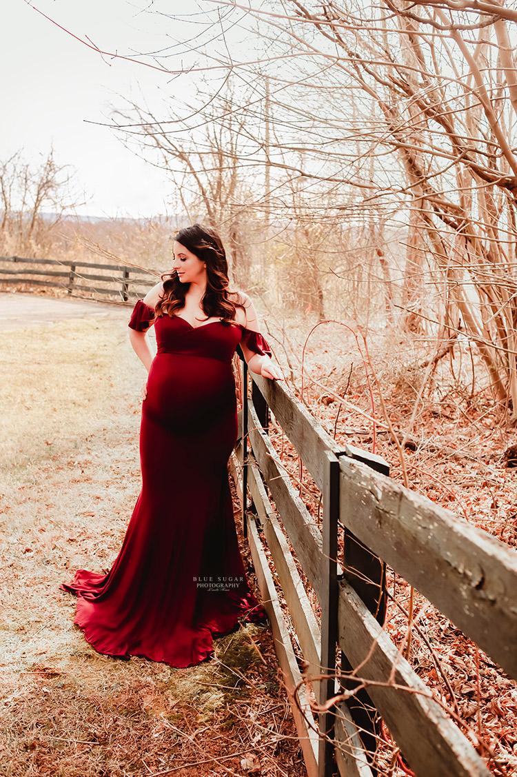 Virginia Pregnancy Photographer