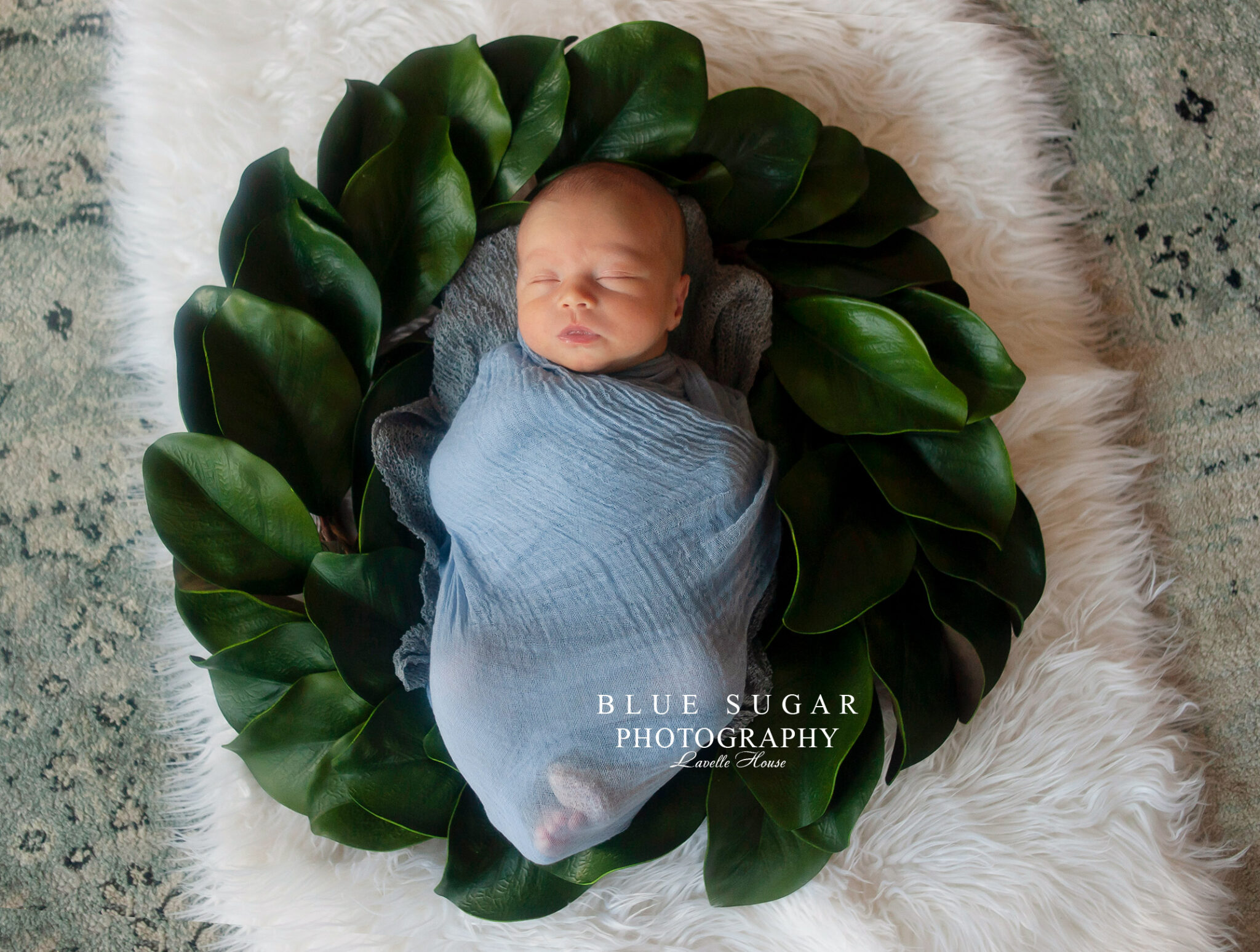 Newborn photography with props
