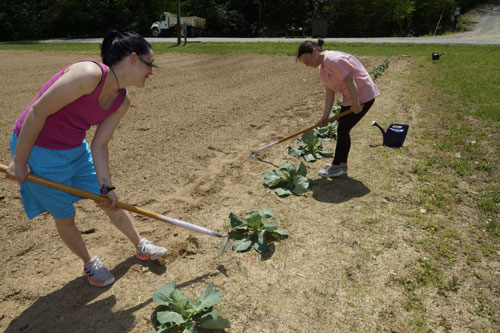 Women's Campus Life – Gardening