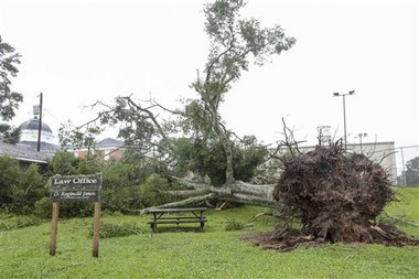 A tree lays uprooted next to Jones Law Group office in Liberty, Miss., Tuesday, June 10, 2014. A strong storm line passed through southwest Mississippi, toppling trees and power lines, leading to power outages and traffic disruptions, as well as causing minor property damage throughout the area. (AP Photo / The Enterprise-Journal, Daniel Lin)