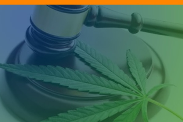 Marijuana Awareness Education Course (MAEC)