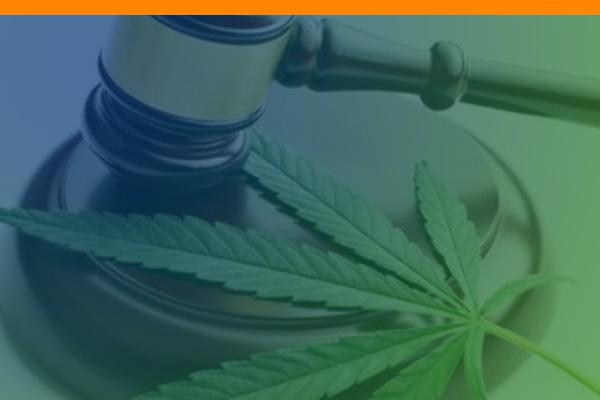 Marijuana Awareness Education Course (MAEC)