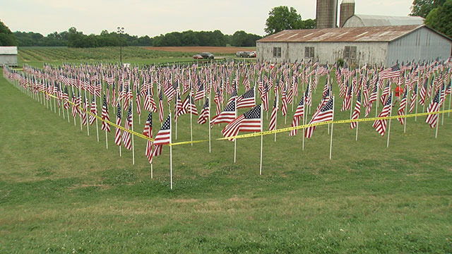 Photo of 818 flags placed in Healing Field to honor veterans, their families