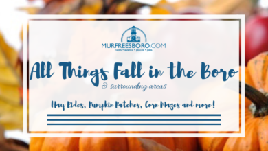 Photo of All Things Fall In The Boro 2019