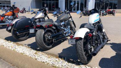 Photo of Bumpus Harley Davidson Test Drives and Bike Night