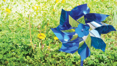 Photo of Pinwheels for Prevention