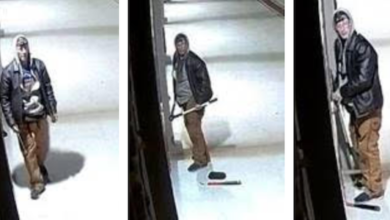 Photo of Assistance Needed in Identifying an Individual Responsible for an Attempted Break-In