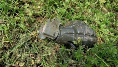 Grenade found in Murfreesboro home yard