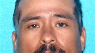 Armando Morales, Jr