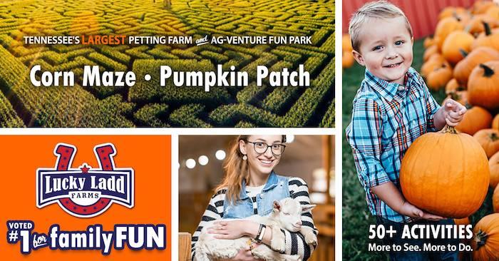 Pumpkin Patch and Corn Maze