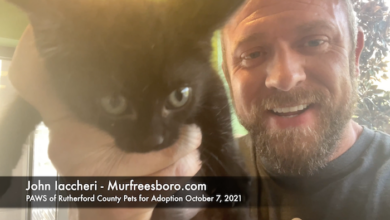 PAWS of Rutherford County Pets for Adoption October 7, 2021