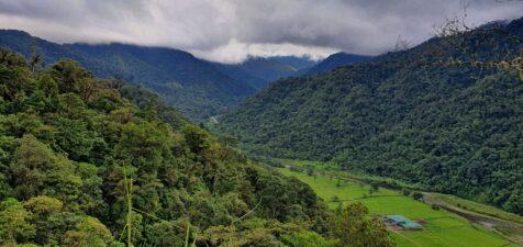 Rainforests of Costa Rica