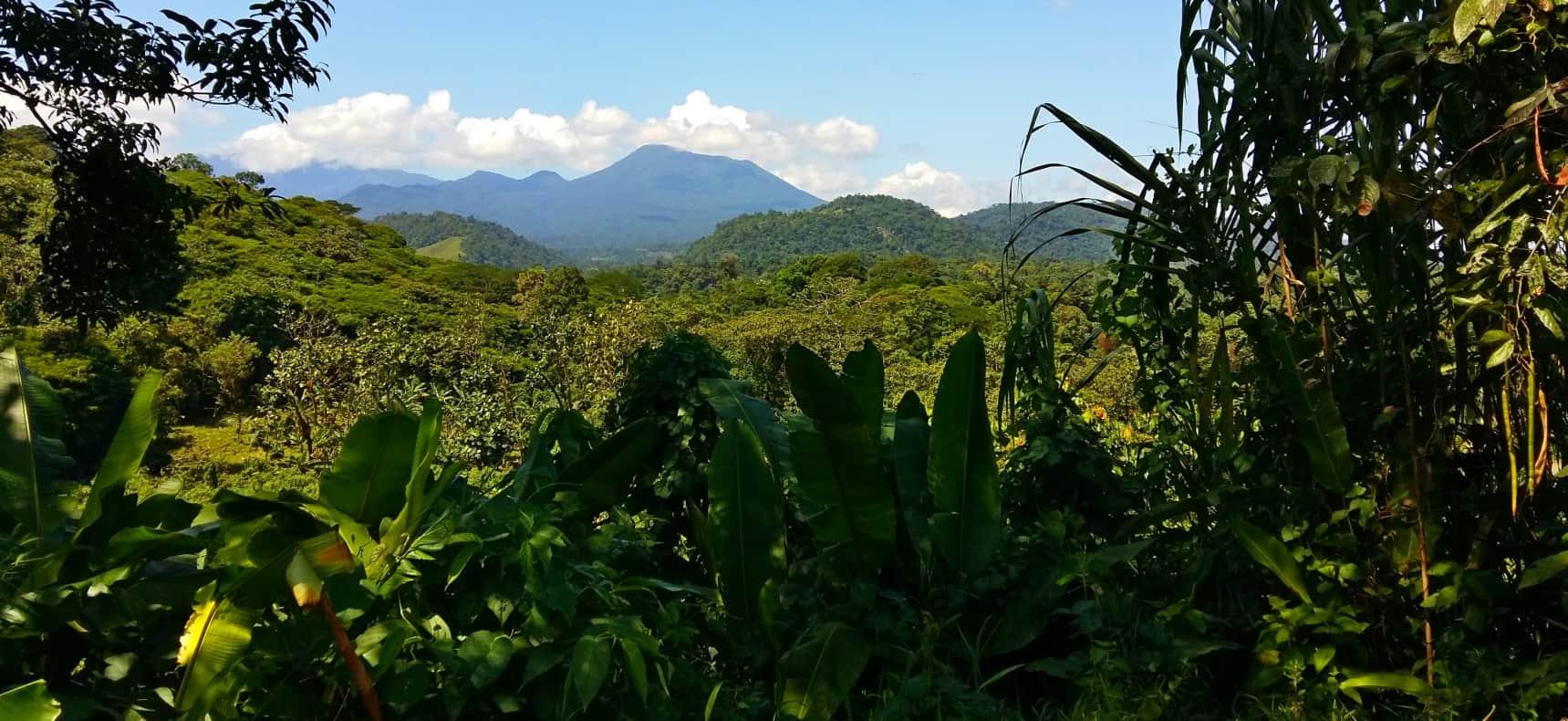 Jungle and Volcano Costa Rica
