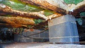 Crawlspace Moisture Problem Kinston North Carolina