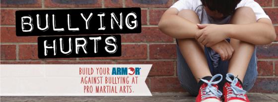 Bullying Pro Martial Arts