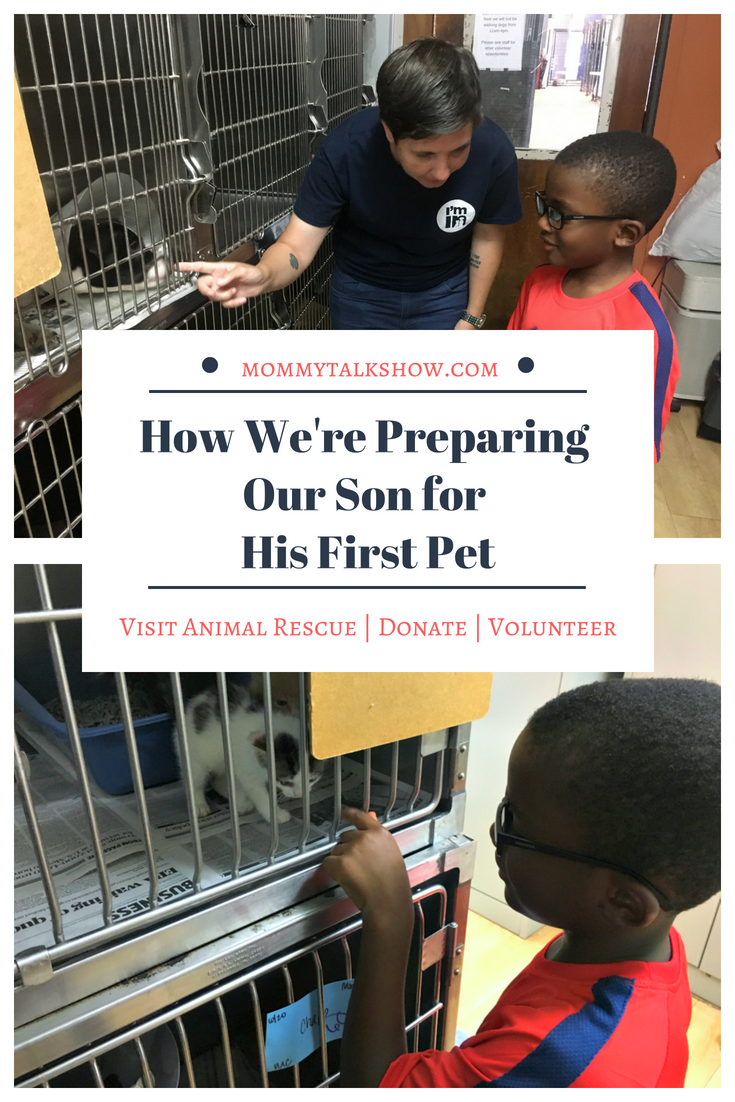 How We're Preparing Our Son for His First Pet