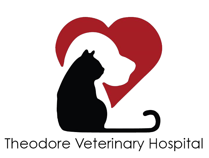 Theodore Veterinary Hospital