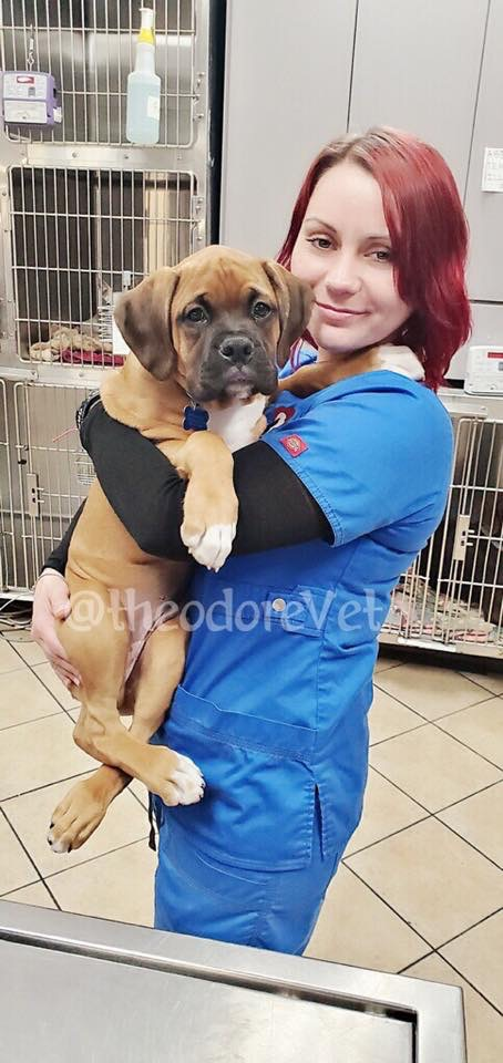 theodore-veterinary-hospital-staff_0648