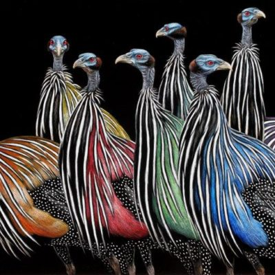 12x18 giclee prints, Vulterine Variations by artist Cythie Fisher