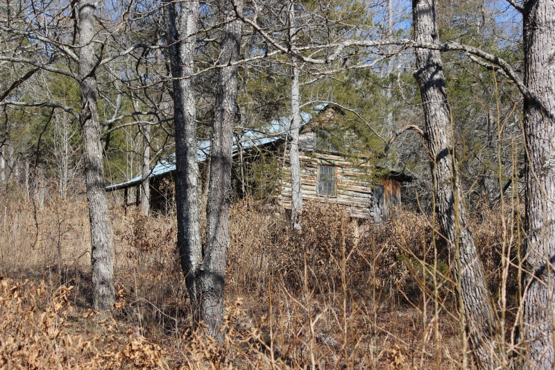 Old Villines Homestead Near Ponca AR