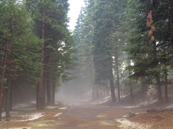 YosemiteIMG_3242