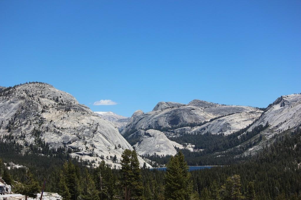 Tuolumne Meadows YosemiteIMG_8637