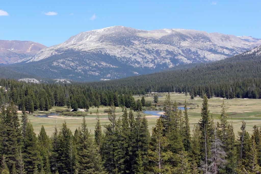 Tuolumne Meadows YosemiteIMG_8695