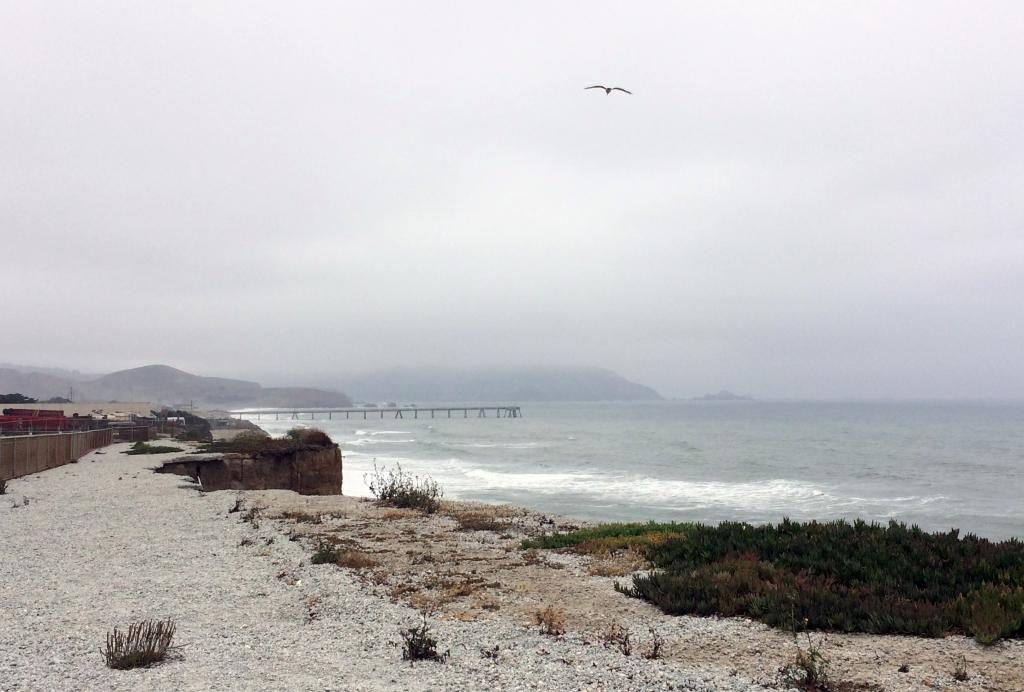 San Francisco RV ResortIMG_3613